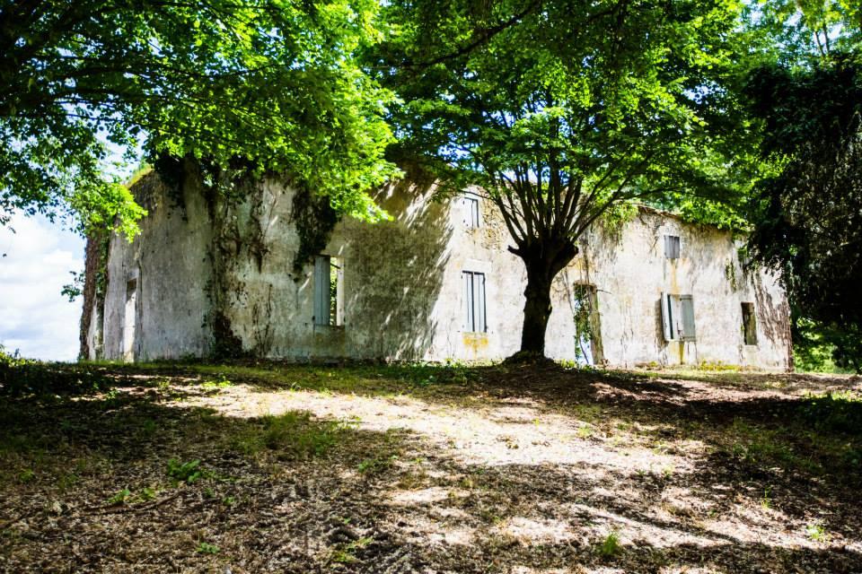 Maison-Pardaillan-2014-5